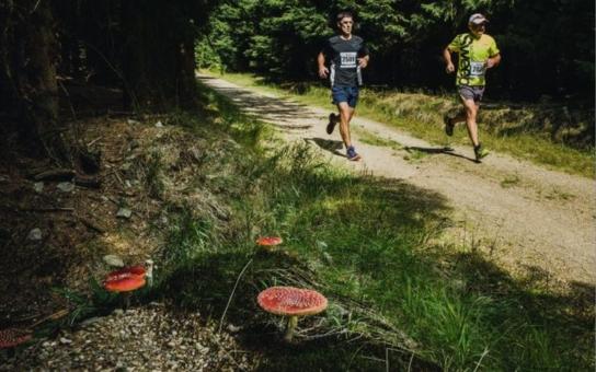 ČEZ Jizerská 50 přinesla skvělé finále seriálu Běhej lesy. Na start všech závodů bylo letos přihlášeno 1843 běžců, na ultramaratonské trati na 50 kilometrů s převýšením tisíc metrů kraloval Přemysl Ježek