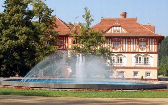 Muzeum luhačovického Zálesí by mohlo do dvou let mít novou expozici, věnovanou architektu Dušanu Jurkovičovi. Nabídne zejména unikátní virtuální prohlídku jeho nerealizovaných staveb