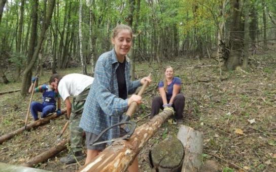 Desítky dobrovolníků z Hnutí Brontosaurus zahájily v Krkonoších sezonu podzimních dobrovolnických akcí. Více než osm desítek jich v Horním Maršově uklízelo lesy, pomáhalo v ekocentru i na kozí farmě
