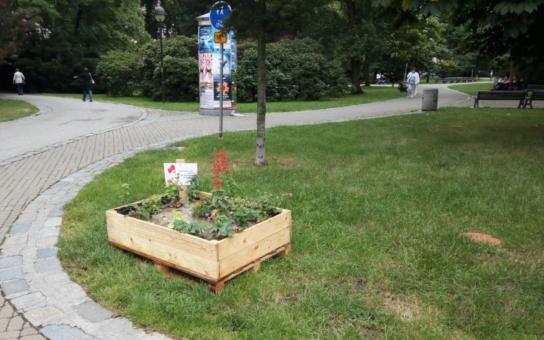 Jahody vyzobány, bylinky na talíři a kytičky přesázeny. Mise vyvýšených IGY záhonů, které nejen zdobily, ale také pomáhaly, je u konce