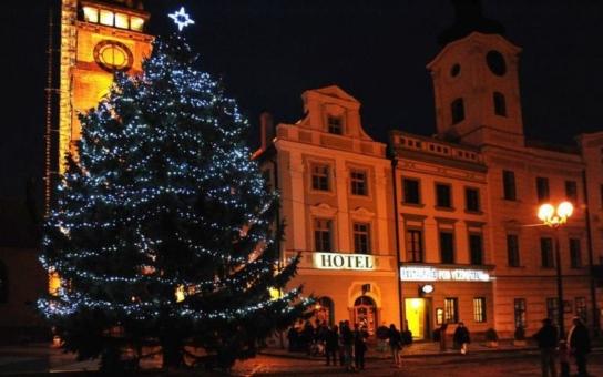 Hradečané povezou letos poprvé vánoční strom z větší vzdálenosti. Masarykovo náměstí rozzáří smrk pichlavý od soukromého dárce z Holic