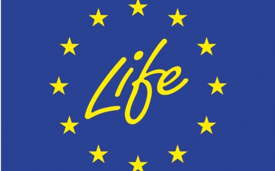 Program LIFE nabízí milióny eur na ochranu životního prostředí: Přinášíme zajímavé podrobnosti o možnosti financování projektů z fondů EU