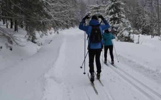 Nejstarší běžecký závod v republice pořádají o víkendu domažličtí Sněhaři. Pro milovníky běžek aktualizovali mapu lyžařských tras na Čerchově