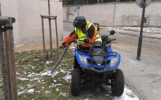 Plzeň se zaměří na úklid po pejscích. Pytlíky ze stojanů neustále mizí, situace na chodnících a trávnících ale tomu nenasvědčuje