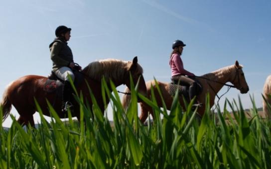 Jsme na koni! Posuzovat popularitu podle počtu přespání není správné. Srdeční záležitostí jsou koně a stezky