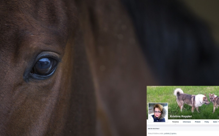 Bitka o týrané koně zuří dál. Na Facebooku… To, že zemře hříbě, se stává, píše tajemná Kristina Keppler. Kdo obchoduje s koňmi, psy bez PP a dokonce zbraněmi?