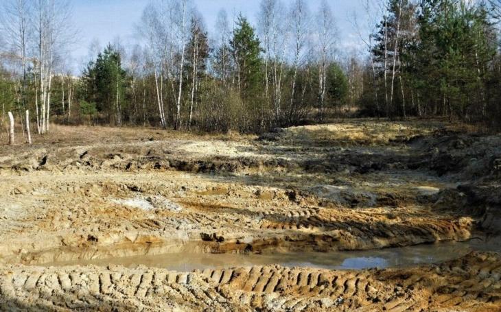 Na budějovickém tankodromu probíhá obnova vzácných stanovišť. Těžší práce provádějí pracovníci společnosti Lesy a rybníky, zbytek gymnazisté