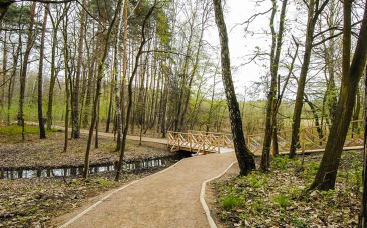 V Lesoparku Ostende poblíž Velkého boleveckého rybníka čekají návštěvníky nové cesty i lesní tůně