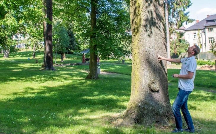 Kraj Vysočina pečuje o parky ve svém vlastnictví. Nenechte si ujít Víkend otevřených zahrad