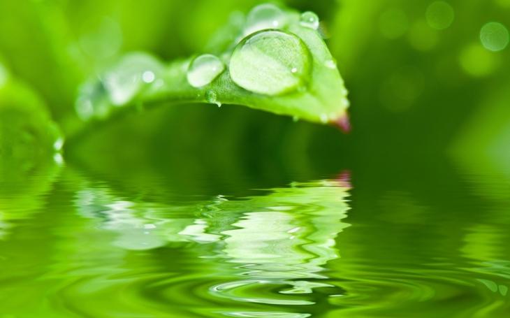 Česko trápí sucho. Stát přichází s druhým kolem Dešťovky, kde je na dotace vyhrazeno 240 milionů. Domácnosti mohou získat až 105 tisíc