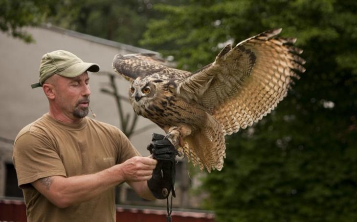 Jaký je svět dravých ptáků? V liberecké ZOO budete mít nově možnost ho poznat. Sokolníci ukážou výcvik