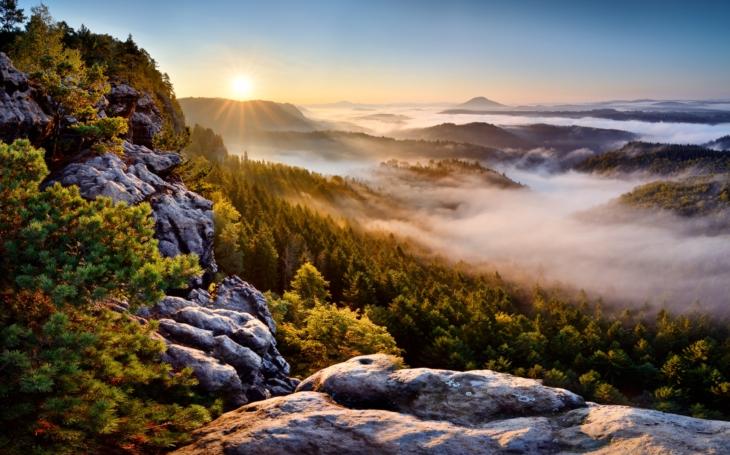 Krása i zranitelnost... Cesta do pralesa Česko-Saského Švýcarska. Výstava v Krásné Lípě, která tu ještě nebyla