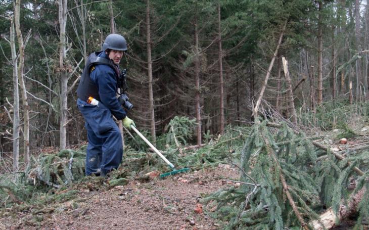 Výbuch muničáku ve Vrběticích: Tamní lesy křižují pyrotechnici; ti armádní již skončili, teď zde operují policejní