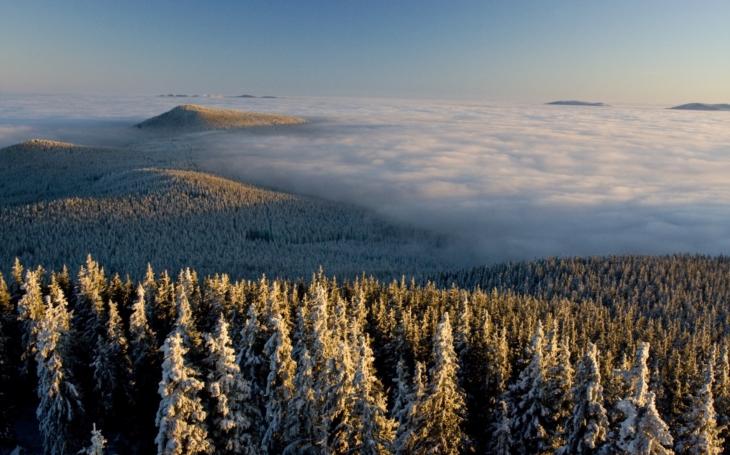 Na Šumavě začne Rok pralesů. Odstartovala jej nová kniha, nádherná, výpravná publikace Pralesy Šumavy