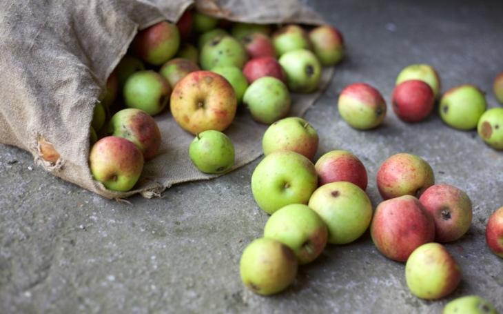 Politici Visegrádské čtyřky vyhlásili válku a teď najednou mlčí. Jedovatá jablka nevadí?