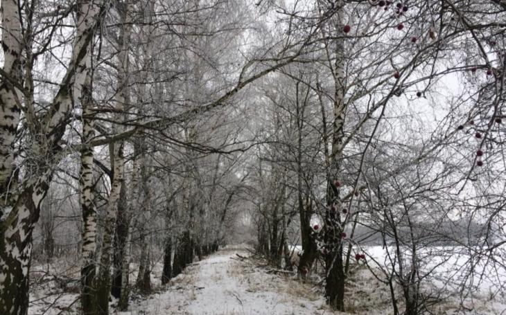 Co je lepší, teplá, nebo zasněžená zima?
