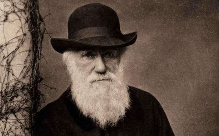 Myšlenky Charlese Darwina, které doposud nebyly zveřejněny, k tomu ještě špionáž, spousta tajemství… Z toho vám naskočí husí kůže