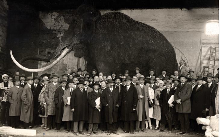 Brněnský mamut nejdřív odešel, pak jim shořel a teď chystají jeho narozeniny. Bude mu rovných devadesát