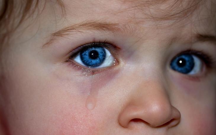Když umírá dítě. Kraj se snaží odtabuizovat citlivé téma nevyléčitelně nemocných dětí a péče o ně
