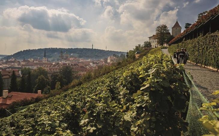 Nevšední zážitky, nevšední místa, nevšední příběhy. Rozjede se druhý ročník Pražské vinice 2018