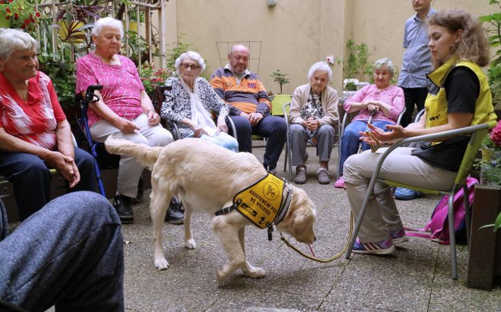Zázraky s psí láskou. Canisterapie dokáže rozzářit podzim života k neuvěření. Petr Lachnit přináší důkazy