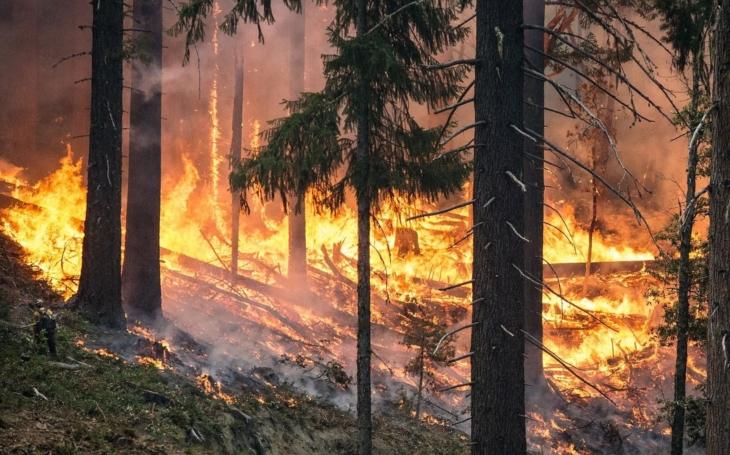 Sucho a vedro, to je nebezpečná kombinace. V Královéhradeckém kraji nově platí zákaz rozdělávání ohně ve volné přírodě