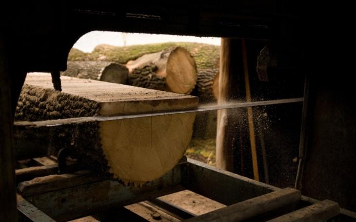 Habr, ale i hrušeň, švestka nebo dřín, lípa i topol. Naši předci používali více druhů dřeva než jen obligátní smrk