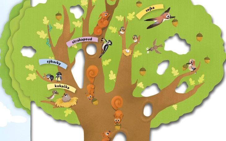 Jak to chodí ve včelím úlu, v mraveništi a co se děje na stromě? Nahlédněte do utajeného světa, který máte nadosah