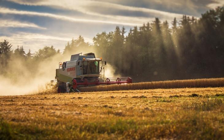 Brambor je málo? Nebojte, zemědělci skučí každý rok… Jak je to doopravdy s úrodou po mega suchém létě?
