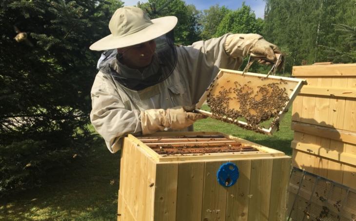 Med je prostě móda. Netradiční dárek z jaderné elektrárny upozorňuje na čistý provoz. V Temelíně stočili 150 kilo medu