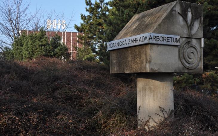 Původní sbírka dřevin vznikla u univerzitního kampusu v roce 1938. Nyní brněnské arboretum slaví 80 let
