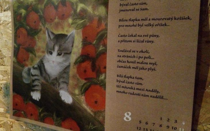Měla jsem sen, v němž se to hemžilo kočkami všech velikostí a barev… Den, vlastně spíš večer pro kočku