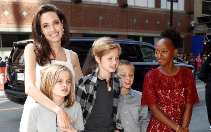 Angelina Jolie a Brad Pitt vystavují pánubohu reparát z biologie. Dokonalé chucpe. Komentář Štěpána Chába