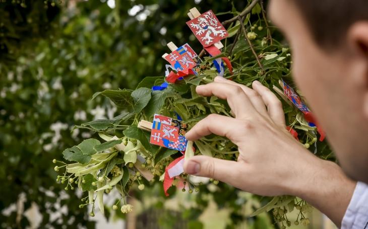 České barvy hájí stoletá lípa z Velkých Opatovic. Začalo klání o Evropský strom roku, naše lípa má velkou šanci. Hlasujte