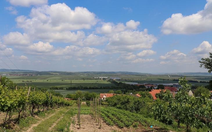 Jarní jižní Morava: Vychutnejte si krásnou přírodu i nejlepší české víno