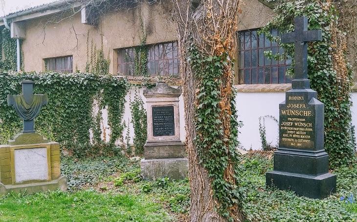 V Rokycanech našli místo pro venčení psů. Ze hřbitova prostě udělali park. Český poutník