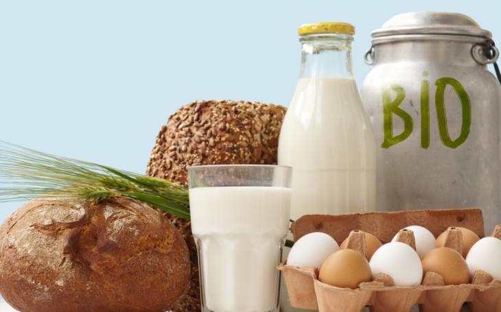 Zakysané mléčné výrobky, ty se v lednici nikdy neztratí