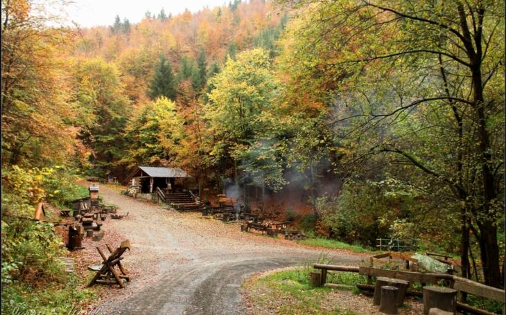 Od ozdravovny, kde k léčení duše objímáte stromy, až k prvnímu lesnímu baru vMrtvém údolí. Český poutník