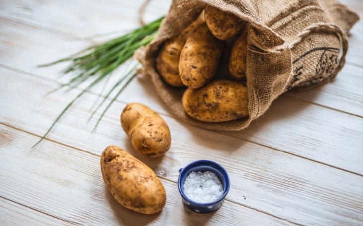 Každý z nás sní za rok průměrně 60 kilo brambor. I proto jsme tak trochu bramborářskou velmocí