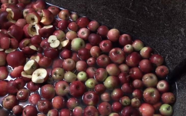 Z jablek mošt, z moštu dobrá nálada a zdravý pohled na svět. V Klimkovicích mají nový lis a nové nabídky. Cena zůstává stejná