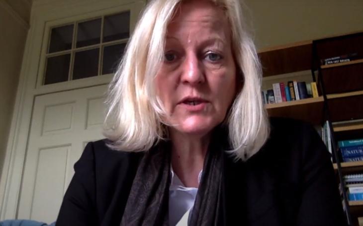 RECENZE Navzdory očekávání trhák Inkoust od Alison Belshamové pokulhával