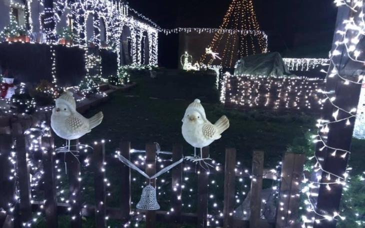 Kup máslo, cukr a čtyři kilometry vánočního řetězu s LED žárovkami. Láska, krásné vzkazy a dřina už od září