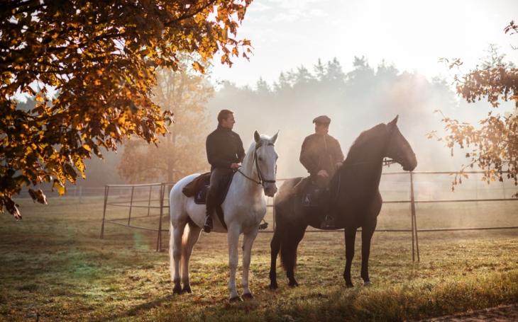 Bratři Krausovi na koňských stezkách. Natáčí se již od léta a krásní kluci na nádherných koních, to je prostě tutovka. TV glosář Ely Novákové
