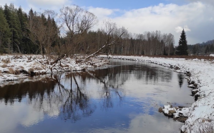 Brodění řekou na soutoku Studené a Teplé Vltavy a úklid na Šumavě. I kočky a ptáčkové musejí jíst. Život v lockdownu, den dvacátý pátý