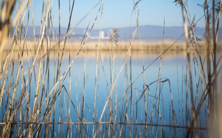 Hlubší než Orlík, větší než Mácháč. Jezero Most se připravuje na letošní premiérovou sezonu