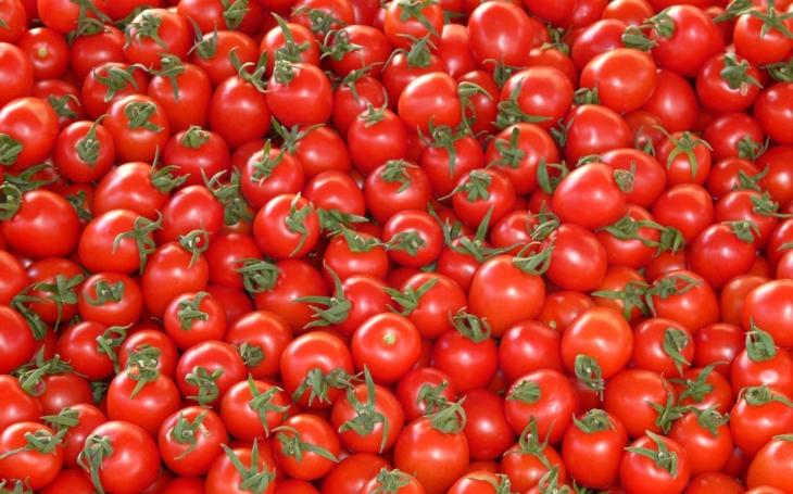 Jak jsem likvidoval celou várku krásných rajčat a dostal céres za to, že bych je radši snědl. Komentář Štěpána Chába