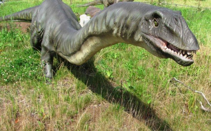 Přežívají v bažinách poslední dinosauři? Dobře utajené příšery - seriál Krajských listů, díl desátý